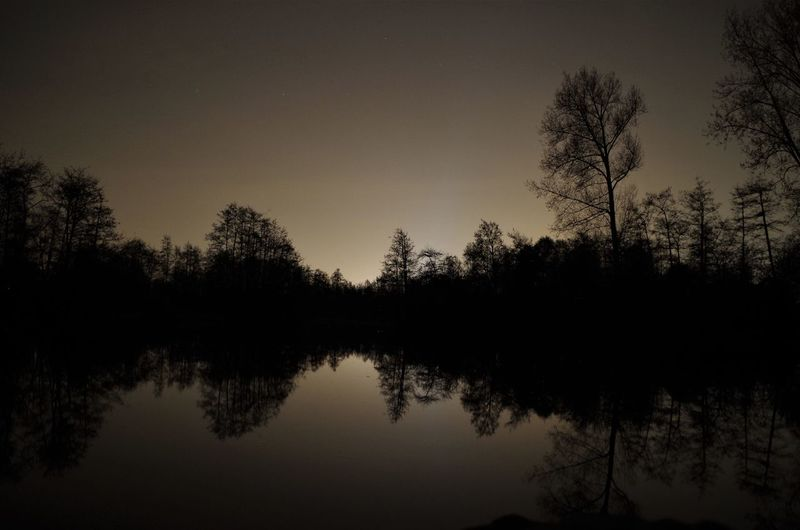 One night in the park. Beauty In Nature Day Forest Growth Lake Nature No People Outdoors Reflection Scenics Silhouette Sky Tranquil Scene Tranquility Tree Water