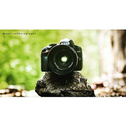 Nikon 50mm Nature Shoot Focus DSLR Stone Green Colours Canon_clicks Creativephotography ©P