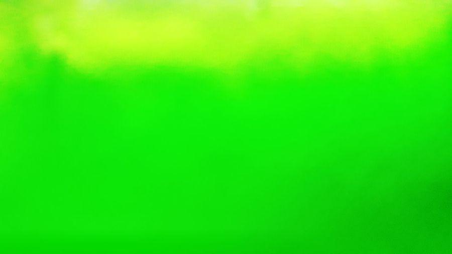 Full frame shot of multi colored green background