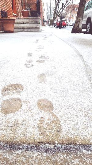 Philadelphia Philly Snow Day Snow Foot Traffic Footprints Tracks Tracks In Snow Bike Track Walk