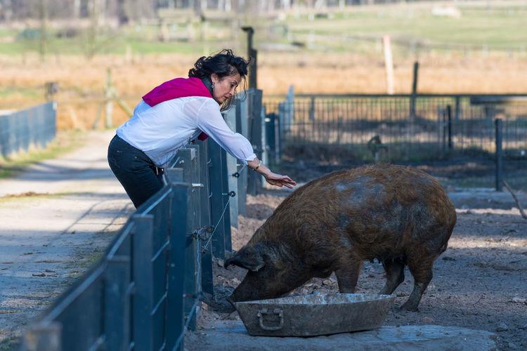 Woman Petting Pig