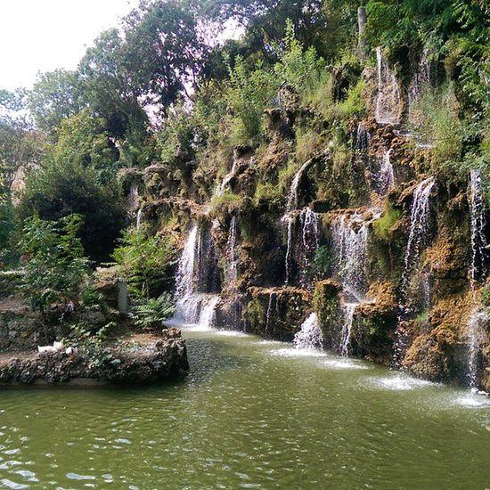 Istanbul Emirgan Koru Park sariyer nature manzara color travel tour