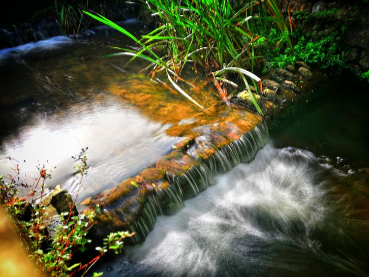 Waterfall Water River Nature Outdoors Beauty In Nature Motion Huawei Photography Scenics Beauty No People Moss Tree Plant Day Freshness P10 Plus Photography EyeEm Selects EyeEm Best Shots Vignette Long Exposure Silky Water