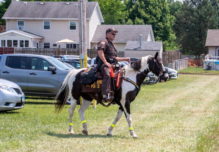 Full length of man riding horse cart