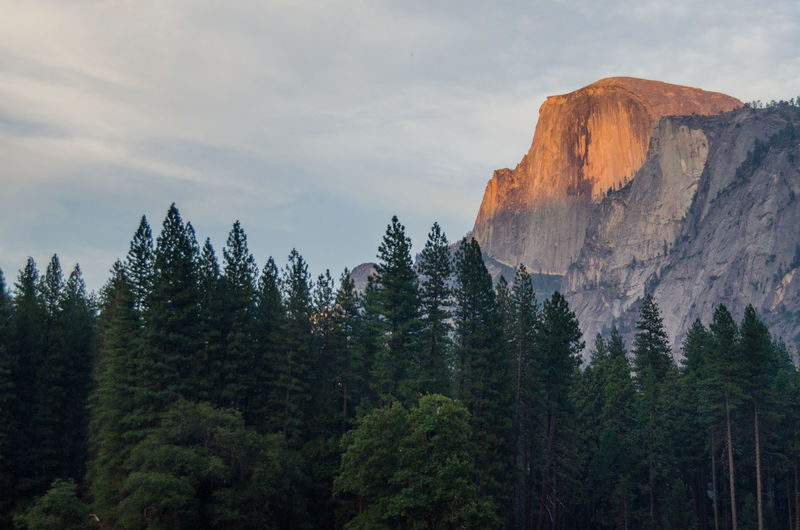 Views of the famouse yosemite national park in ca