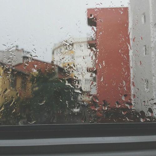 RainyDay Peace EyeEmNewHere