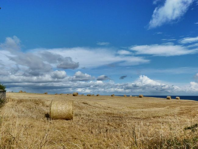 Scotland EueEmNewHere Sky Field Landscape Tranquility Tranquil Scene Cloud - Sky Agriculture
