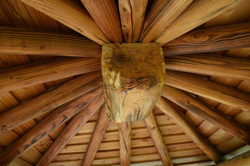 ลาย ลายไม้ พื่นผิวพนัง Wooden Texture Wood