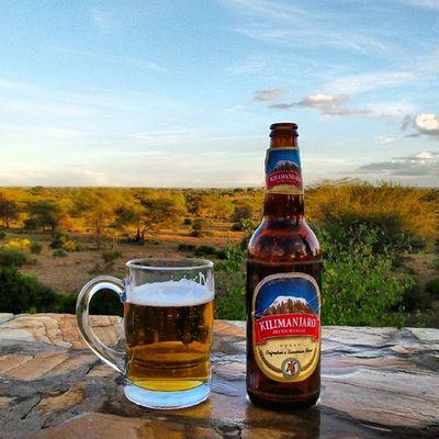 Killimanjaro Killimanjarobeer Tanzania Tanagire africa Girrafes Zebra Crossing Elephants Beer - Alcohol Beer Glass Beer Beer Time Travel Destinations Park Naturephotography Taking Photos