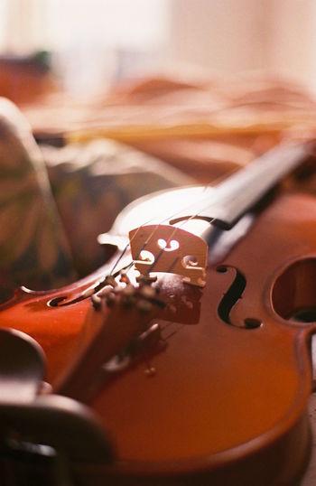 Violin String