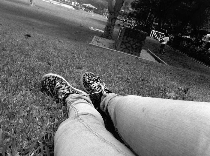 Jean Shoes Flowers Sun Free 🐥