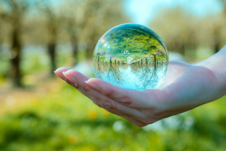Human Hand One Person Sphere Human Body Part Close-up Planet Earth Fragility Adults Only Outdoors Crystal Ball Nature Beautiful Green Trees Day Tranquility Spring Scenics Freshness Sunlight Beauty In Nature Growth Grass Plant