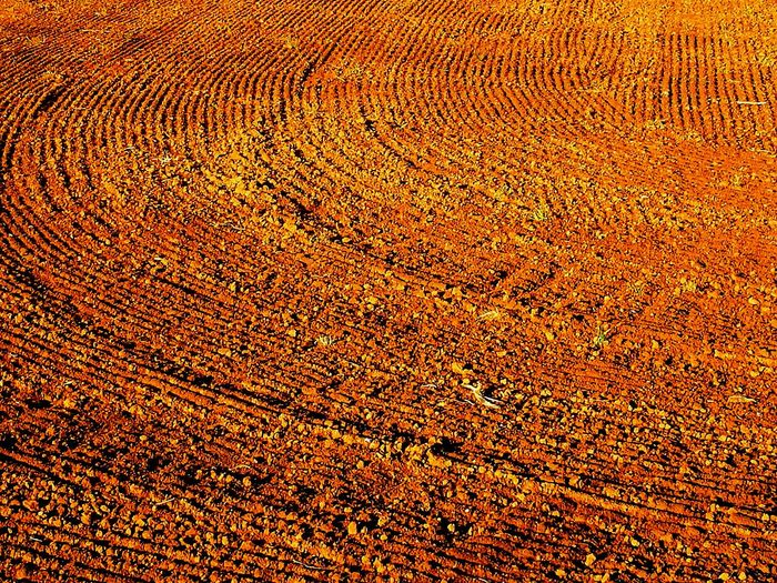 Textured  Full Frame Pattern Abstract Brown No People Ground Rural Scene Yellow