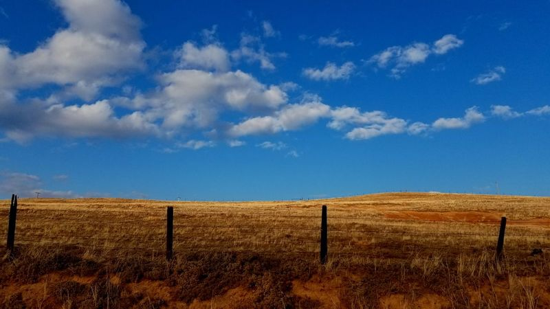 Nofilter Blue Sky Nature Fields Grass Clouds EyeEm Selects Agriculture Rural Scene Cloud - Sky Gate Field Sky Landscape No People Day Outdoors Scenics