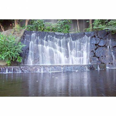 Ueno Onshi Park Ueno Shinobazupond Pond Water fall tokyo japan photooftheday igers instagood instamood tag4likes fujixt1 fujifilm fujinon 1855mm longexposure