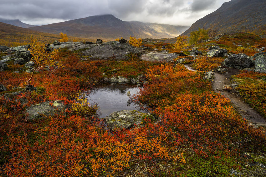 September hiking along The King's Trail in northern Sweden Autumn Day Fall Hiking Kaitumjaure Kungsleden Mountain Multi Colored Nature No People Northern Europe Orange Rain Red Remote Rocks Scandinavia September Sweden The Kings Trail Tourism Tranquil Scene Travel Destinations Vacations Water