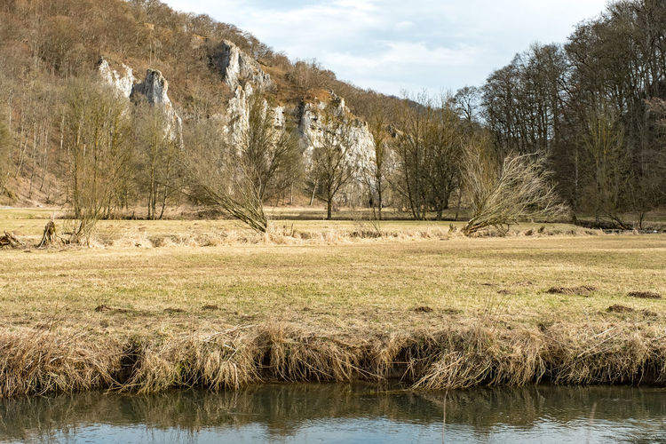 Anhausen Bare Tree Beauty In Nature Cloud - Sky Day Fantasy Photography Grass Growth Landscape Nature No People Non-urban Scene Outdoors Rock Formation Scenics Schwarzlochfelsen Sky Swabian Alb Tranquil Scene Tranquility Tree Water
