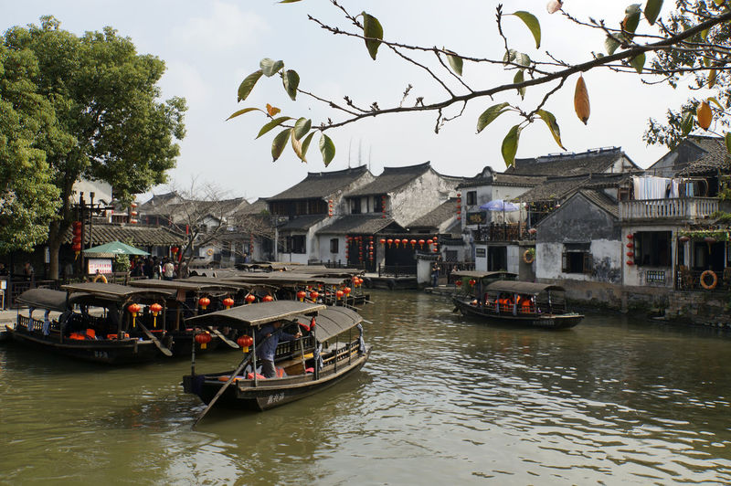 Chinese Water towns Architecture Boat Building Exterior Built Structure China Chinese Water Towns Clear Sky Day Mode Of Transport Moored Nature Nautical Vessel Outdoors Real People River Sky Transportation Tree Water Waterfront Xitang