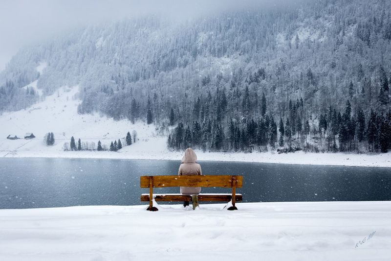 Snow Winter Cold Temperature Nature Beauty In Nature Scenics Relaxation Sitting Day One Person Snowing Landscape Outdoors Swiss Alps Swiss Mountains Adult Tree Warm Clothing People Bench Lake View Bench With A View Bench With Lake View Bench In The Woods Bench In Nature International Women's Day 2019
