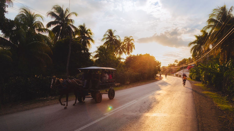 People in horse cart on road against sky during sunset