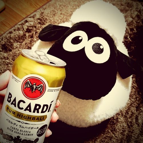 Bacardi  Bacardi  Highball Rum Shaun The Sheep Soft Toy Cute LovelyJapan Relaxing Healing Time The OO Mission