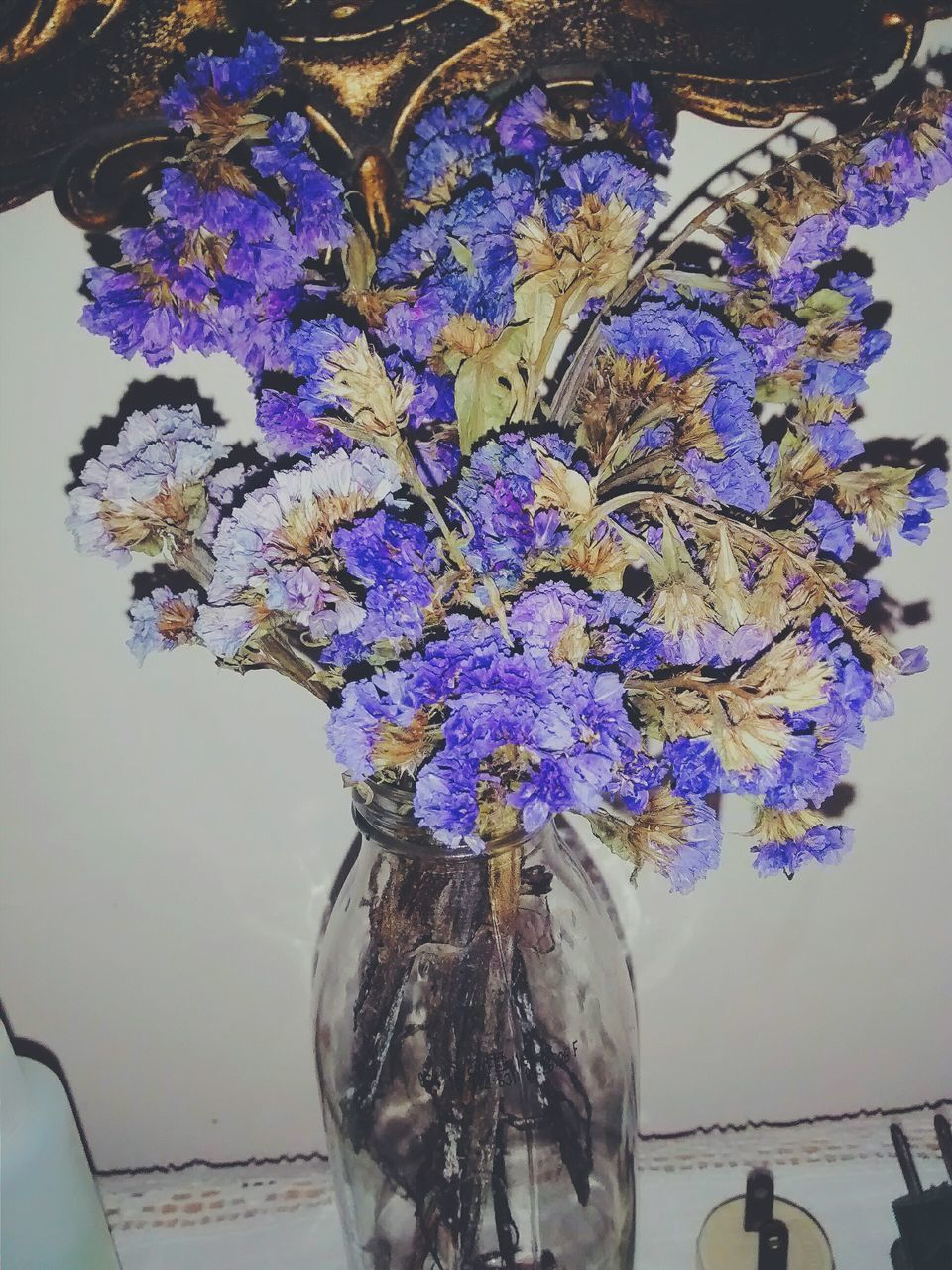 flower, purple, indoors, beauty in nature, vase, hanging, nature, petal, fragility, no people, growth, freshness, close-up, day, flower head