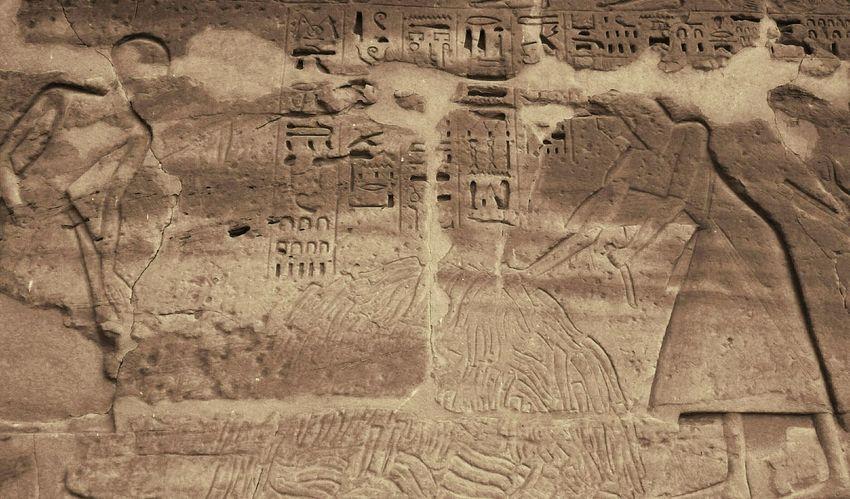 Жрецы считают отрубленные члены врагов фараона. египет арт  Egypt Art