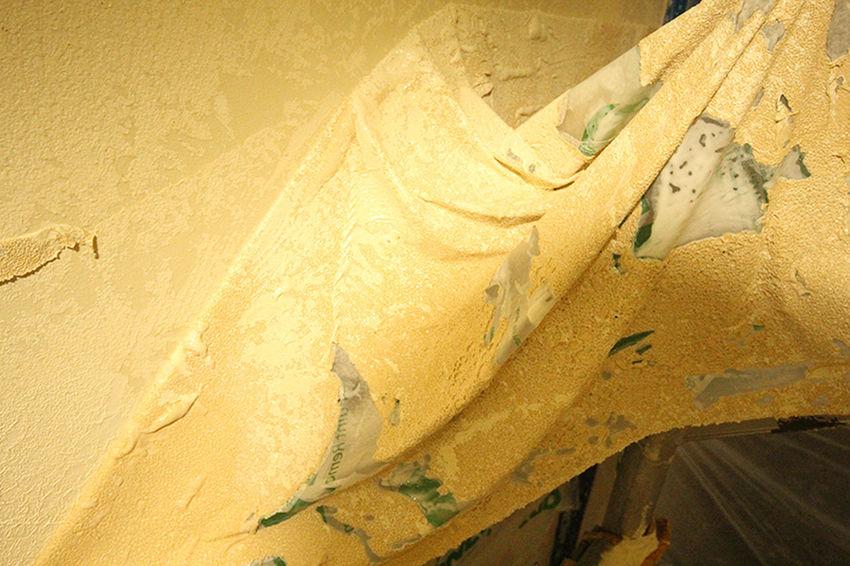 Surepaint, 22/47 Park Road, Brisbane, QLD 4064, 0449 846 744, http://www.surepaint.com.au Commercial Painters Brisbane Painters Brisbane Painters Brisbane Northside Painters Brisbane Southside Professional Painters Brisbane