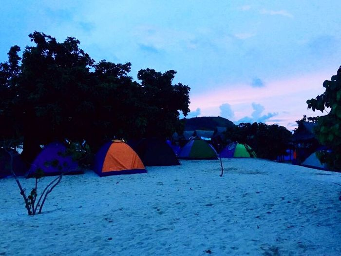 Camping on the beach Tree Tent Real People Sky Outdoors Leisure Activity Nature Vacations Beauty In Nature Large Group Of People Women Men Day People
