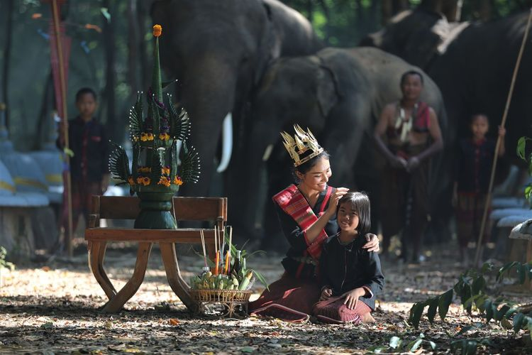 People and elephants on land in forest