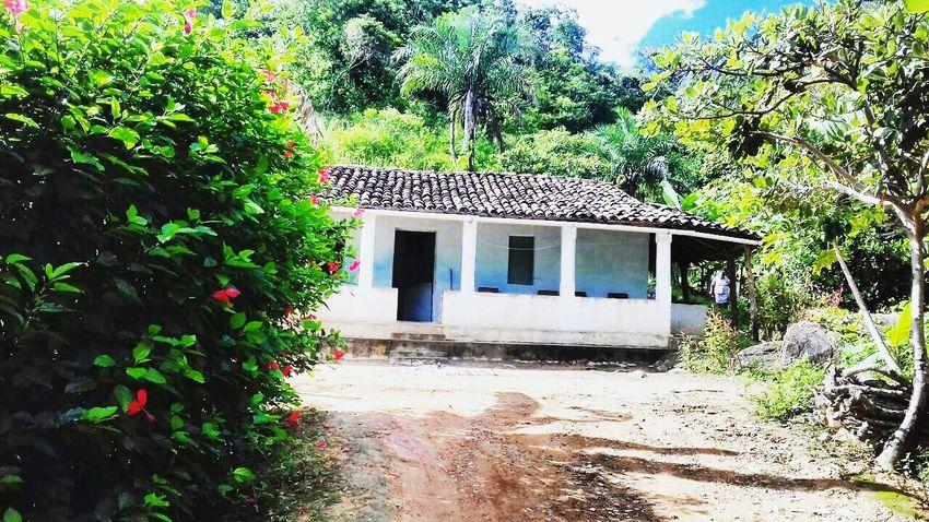 Saudades desse lugar! 🎑❤ Fotography Popular Photos Brasil Fotografia Fhotographynature Sitio💞 Family ❤