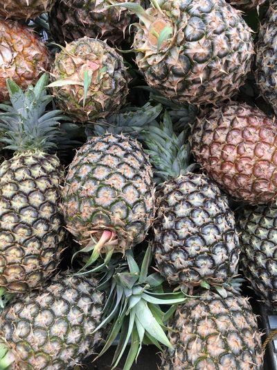 Pineapple harvest Tagaytay Pineapples