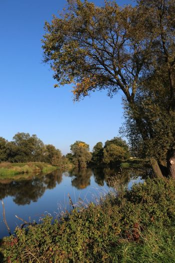 Altweibersommer EyeEm Nature Lover Nature Water Reflections Nature_collection