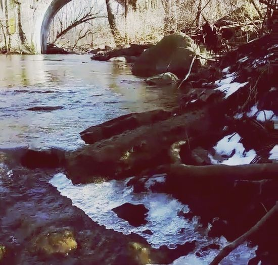Historic Falls Park Historic Fall Creek Beautiful Nature Tadaa Community EyeEm Natue Lover Nature Collection Connected With Nature Hugging A Tree Water Taking Photos