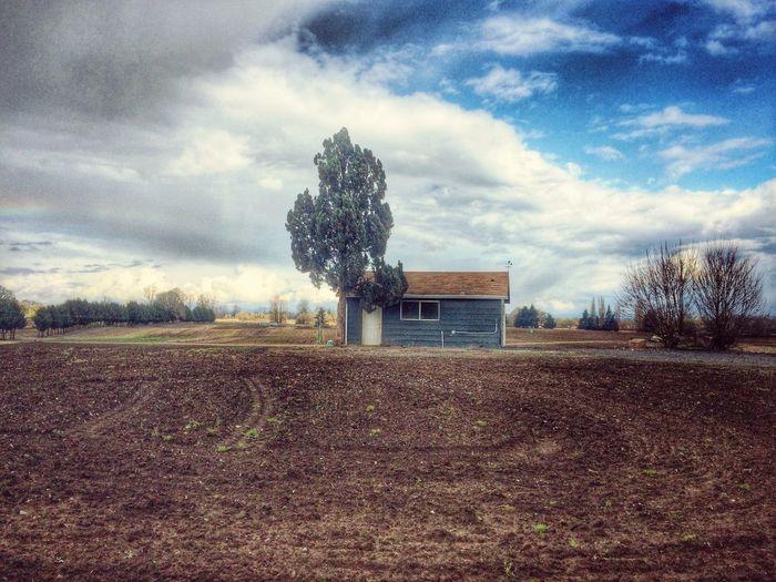 NEM Landscapes NEM Memories NEM Architecture NEM Clouds NEM Good Karma NEM Silence
