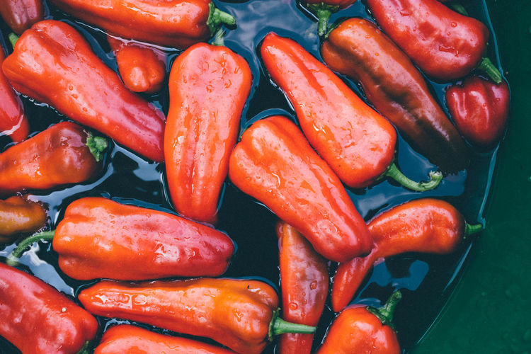 Csa Backgrounds Carmen Peppers Close-up Day Farming Food Food And Drink Freshness Full Frame Healthy Eating High Angle View Market No People Outside Pepper Peppers Peppers, Fresh, Colorful, Organic Red Urban Farming Vegetable Water
