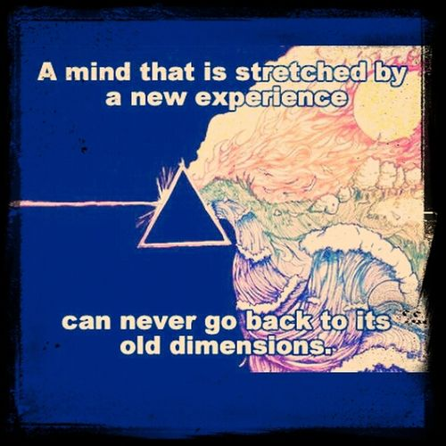 Old Dimensions Learn Expand Vivid Learn Try New Thing