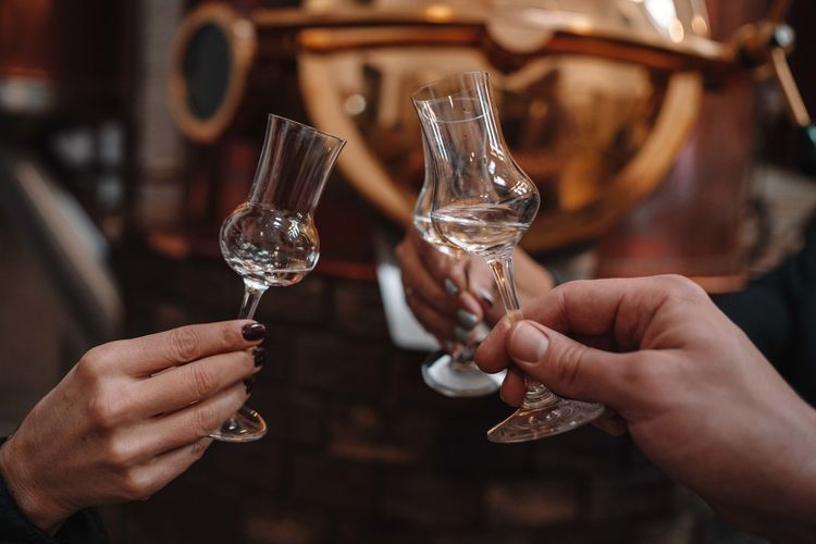 Cropped image of people holding glass of wine