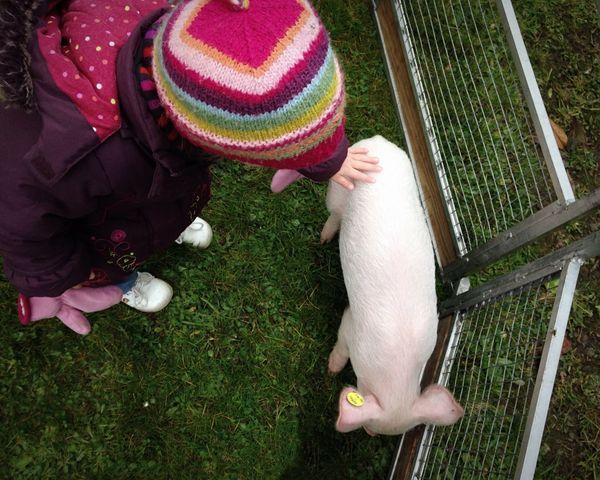 Little L met a new friend this morning Notes Of An Innocent Childhood La Menagerie De Louison