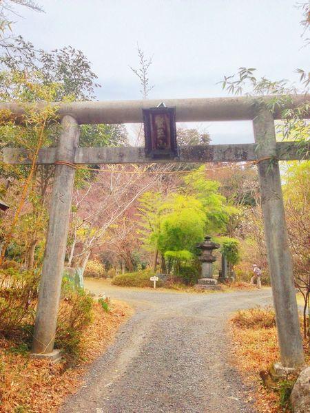 """埼玉県飯能市にある『竹寺』 奥にいるおじさんのポージングが気になる… Short Trip Introducing Culture Of Japan Which Must Be Left To The Future……  """"未来に残す日本の文化"""""""