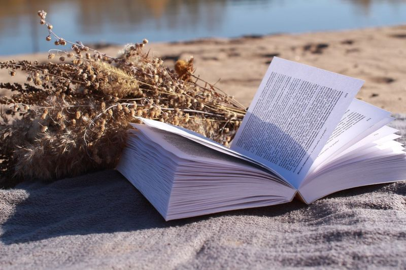 Book Sand Education Beach Page Knowledge Open Close-up No People Literature Day Nature Outdoors Bouquet