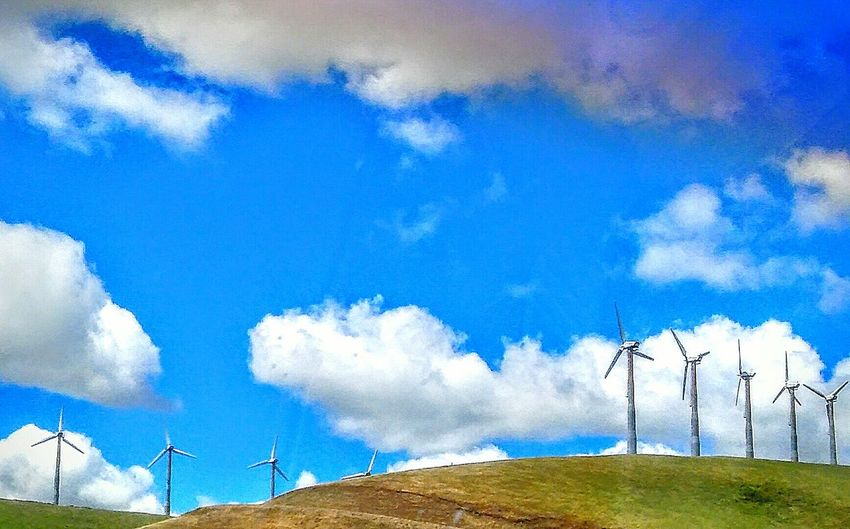Blue Sky Check This Out This Week On Eyeem Telling Stories Differently My Point Of View Wind Turbine Wind Turbines On A Field Clouds And Sky Wind Power Green Green Hillside Driving Highway 580 Road Side View Drive By Photography Freeway Scenery Up Close Street Photography My Favorite Photo