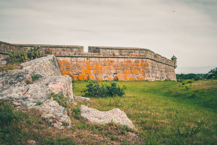 On the 1st of January, Hugo and I hiked to Fortaleza de Santa Teresa. Too bad doors were closed because it was holiday. Nice hike anyways! Green Color Nature Punta Del Diablo Travel Wall Ancient Ancient Civilization Architecture Beauty In Nature Built Structure Day Fortaleza De Santa Teresa Fortress Grass History Moody Nature No People Outdoors Rock - Object Sky Tourism Travel Destinations Tree Yellow