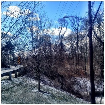 Frosty Morning. It was a little cold today. #iphoneography #jomo IPhoneography Winter Snow Frost Silverspring Jomo