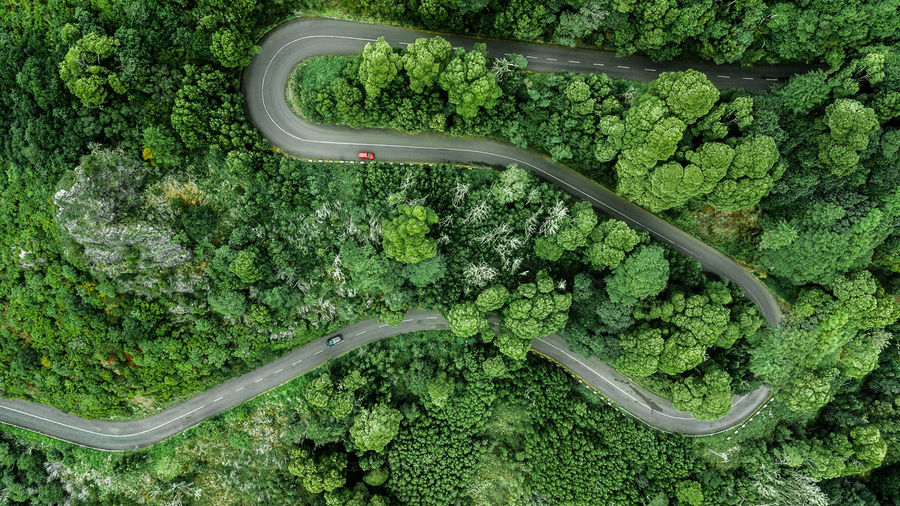 Aerial view of winding road trough the dense woods on the high mountain with two cars passing through. Road Road Trip Drone  Drone Photography DJI Mavic Pro DJI X Eyeem Forest Nature High Angle View Above Above View Top View Top Perspective Aerial View Aerial Photography Aerial Shot Aerial Landscape Encumeada Drone Point Of View Madeira Island Street Outdoors Adventure Tourism Tourist Tourist Attraction  Tourist Destination Journey Winding Road Europe Curve Scenics Scenics - Nature Vacations Travel Destinations Pine Tree Fir Tree WoodLand Hill Springtime Spring Directly Above Cars Beauty In Nature Environment