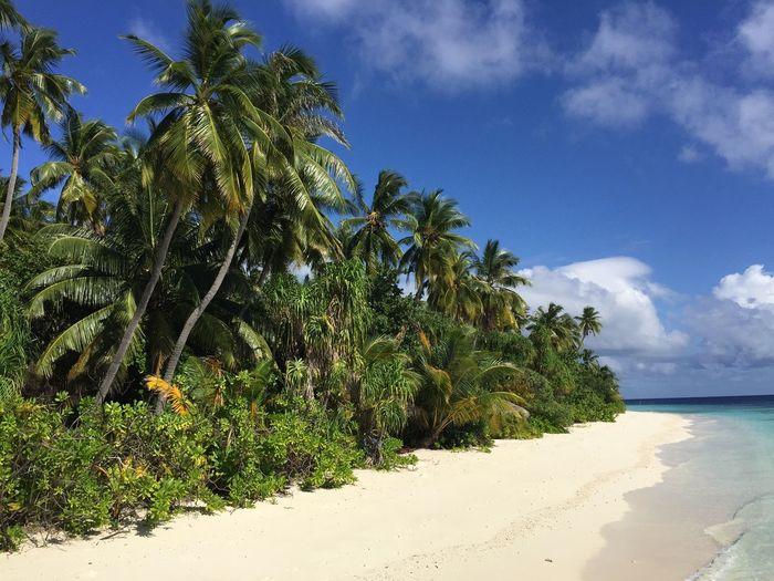 Malediven - ein