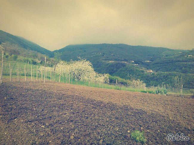 Giornata all'aperto... Nature Landscape Panorama EyeEm Nature Lover