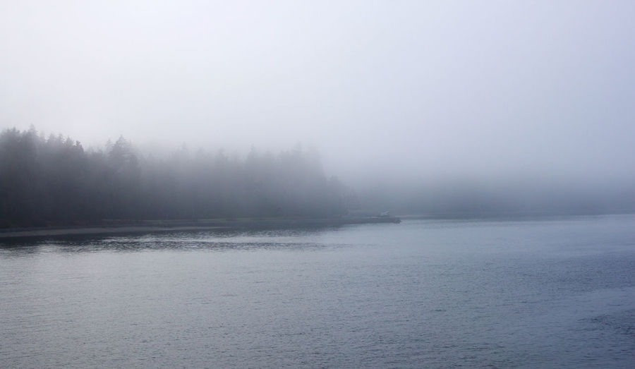 Fog Water Tranquility Beauty In Nature Tranquil Scene Scenics - Nature Waterfront Day Environment Outdoors Vancouver BC