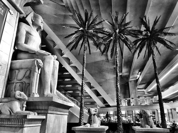 Architecture Built Structure Leisure Activity Palm Tree Lifestyles Architectural Column Low Angle View Travel Destinations Indoors  LuxorHotel Las Vegas Interior Pyramid Atrium Hotel Lobby Monochrome