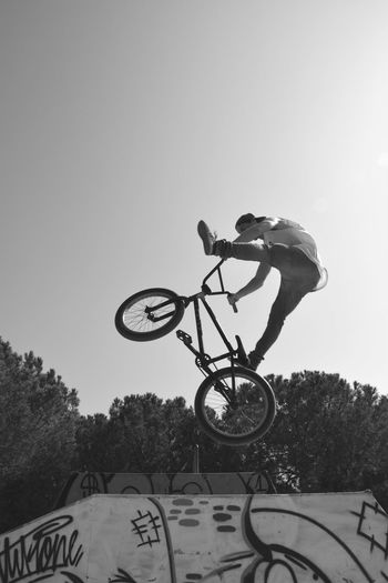 Freestyle biker Bicycle Outdoors Sport Exercising Jumping Mid-air Motion Agility Extreme Sports Sportsman Skateboard Park Freestyle Sports Freestyle Bmx Cycling Freestylebmx Freestyle Biking
